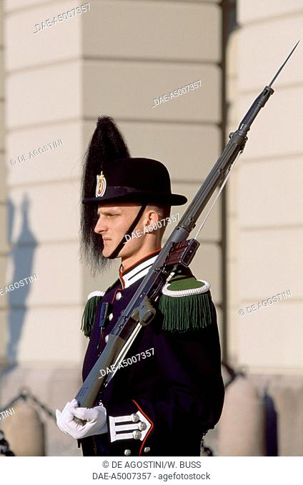 A soldier on guard in front of the Royal Palace in Oslo (Det kongelige slott), Norway