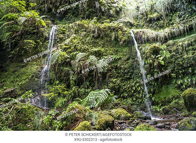 waterfall at the hiking trail Levada do Caldeirao Verde, Madeira, Portugal, Europe