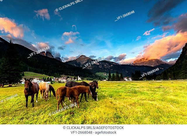 Europe,Italy,Dolomites,Trentino,Fassa Valley