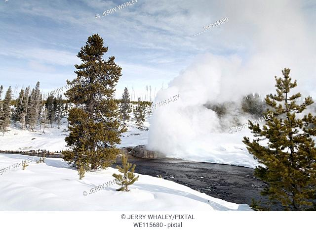 Riverside Geyser, Winter, Upper Geyser Basin, Yellowstone NP, WY
