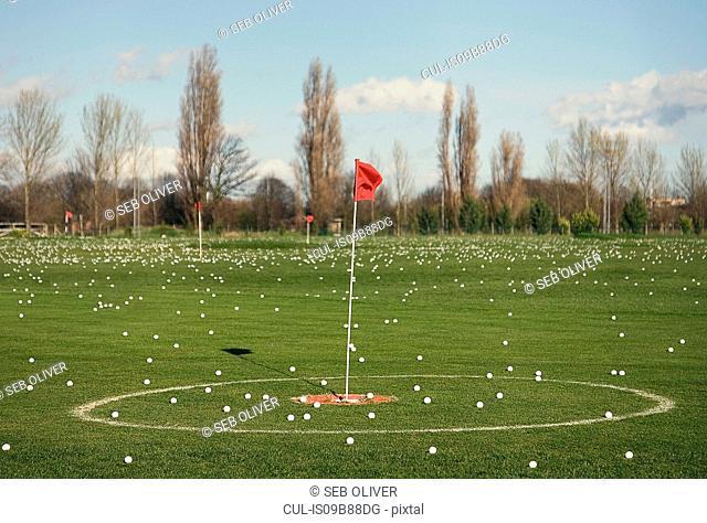 Abundance of golf balls on practice golf green