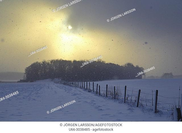 Winter landscape at Grodinge, Sodermanland, Sweden
