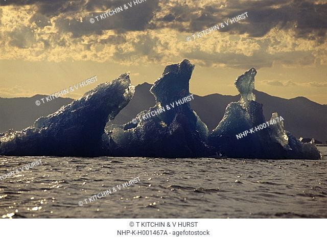 ICEBERG Le Conte Glacier Alaska, USA