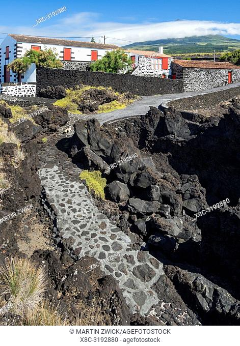Village Cachorro on the northern coast, a traditional village of vintners. Pico Island, an island in the Azores (Ilhas dos Acores) in the Atlantic ocean
