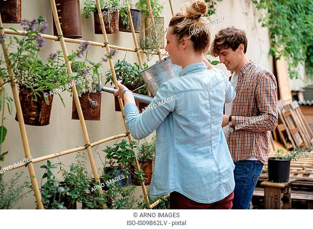 Young man and woman tending to plants growing in cans, young woman watering plants using watering can