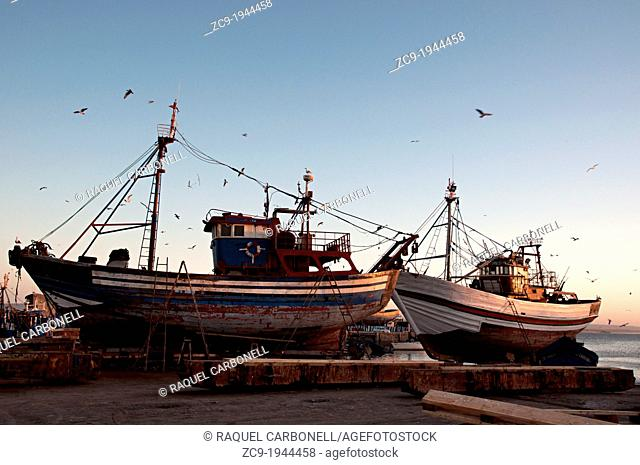 Fishing ships in the port at dusk, Essaouoira, Morocco