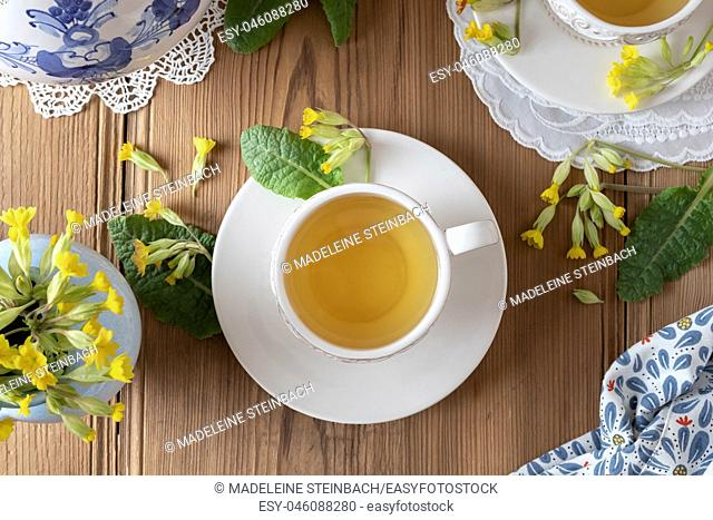 A cup of herbal tea with fresh wild primula flowers, top view