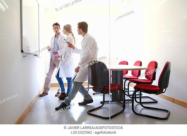 Researchers in meeting room. Technological Services to Industry. Tecnalia Research & Innovation, Donostia, San Sebastian, Gipuzkoa, Basque Country, Spain