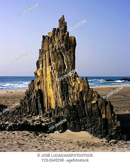 Basalts creek, Natural Park of Cabo de Gata Nijar, Almeria province, Region of Andalusia, Spain, Europe