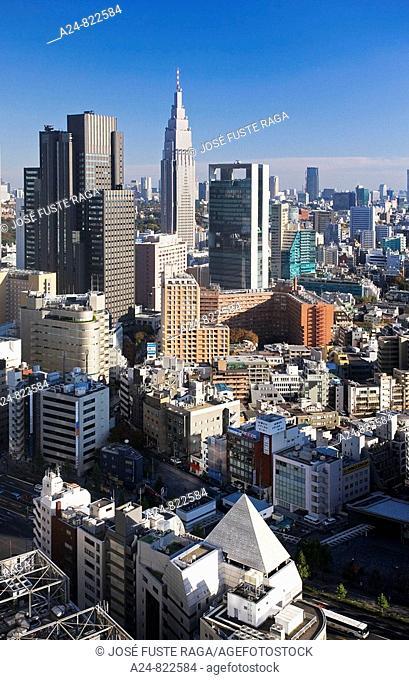 Shinjuku district, Tokyo City, Japan (November 2008)