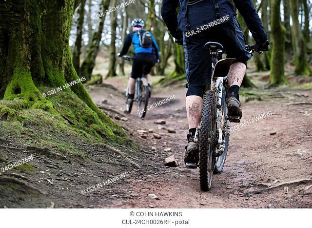 Couple mountain biking in woods