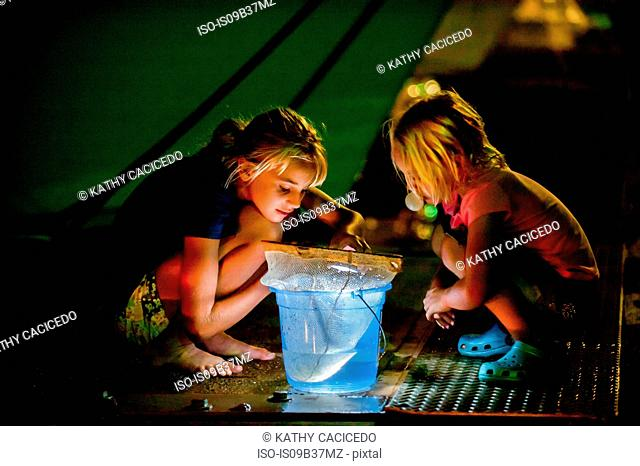 Girls crouching on pier looking into bucket