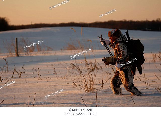 Predator Hunter Walking Across Snow