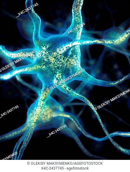 Brain cells Neurons conceptual Neural connections Neurology