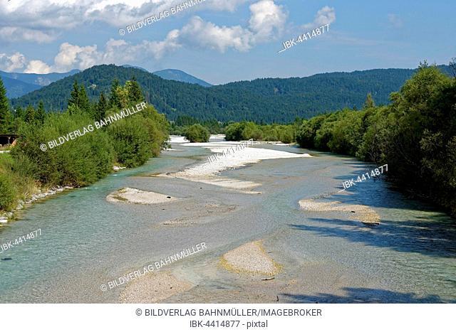 Isar, Isar nature trail, Krün, Mittenwald, Upper Bavaria, Bavaria, Germany