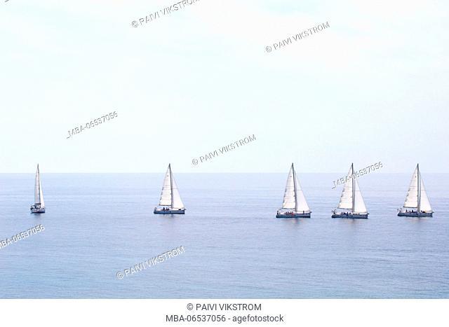 Five sailboats with white sails at the sea, Budva Montenegro