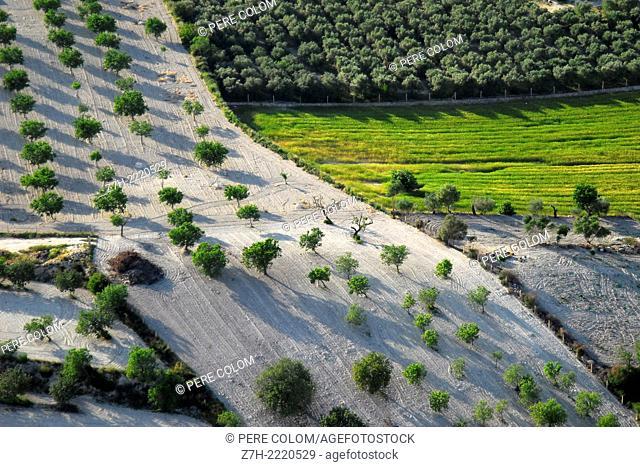 Aerial farmland view. Majorca, Balearic Islands, Spain