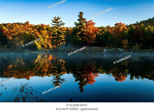 Brilliant colours of an autumn morning are reflected in a glassy Lac Taylor, Gatineau National Parc, Quebec, Canada