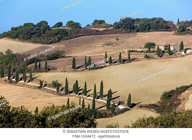 Rolling landscape near Sant'Albino, Province of Siena, Tuscany, Italy, Europe