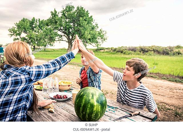 Young woman and friends giving high five at picnic table
