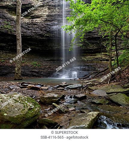 Waterfall in a forest, Cornelius Falls, Arkansas, USA