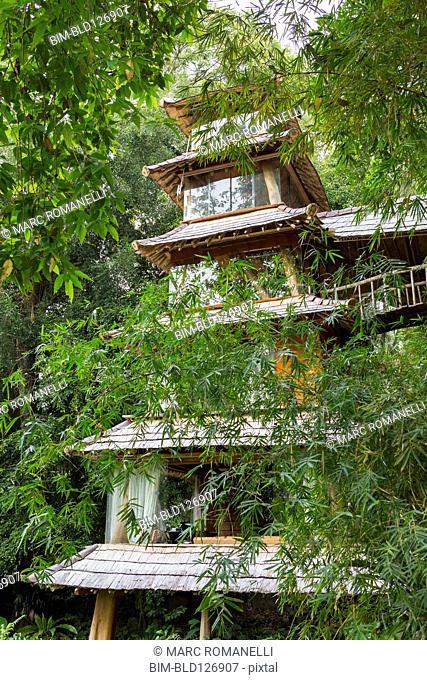 Bamboo trees around Balinese pagoda, Ubud, Bali, Indonesia