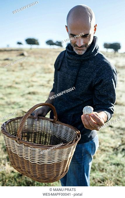 Man collecting mushrooms in field