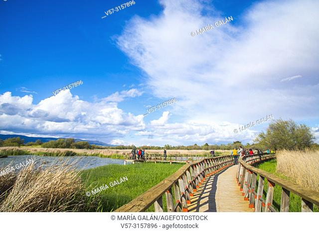 Tourists walking along the footbridges. Tablas de Daimiel National Park, Ciudad Real province, Castilla La Mancha, Spain