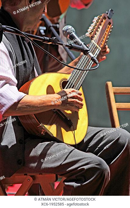 canarian guitarist seated playing the bandurria or lute-type instrument
