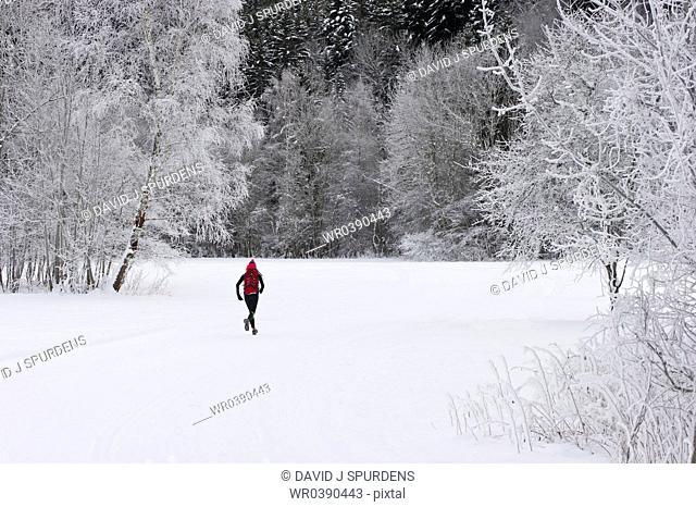 A jogger running throught a snowy winter landscape