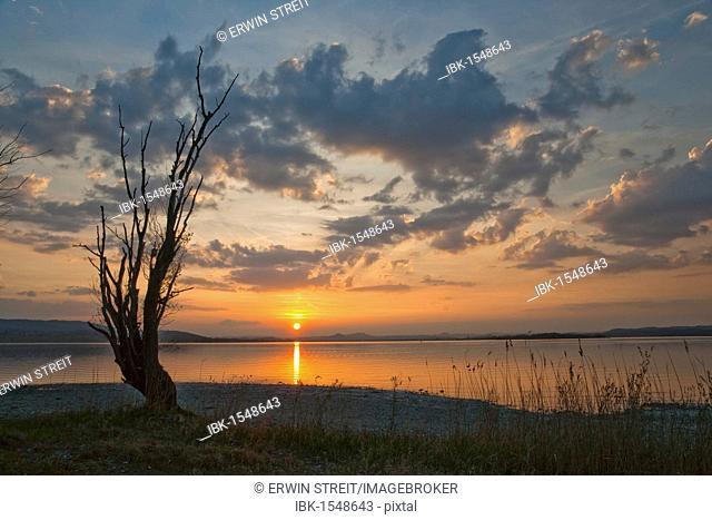 Sunset at Lake Constance on Reichenau Island, Baden-Wuerttemberg, Germany, Europe