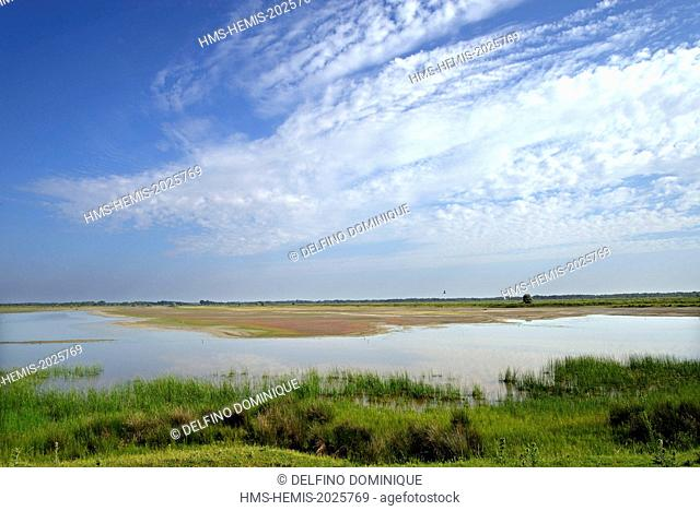 Romania, Danube Delta listed as World Heritage by UNESCO, saltwater marsh near the village Letea