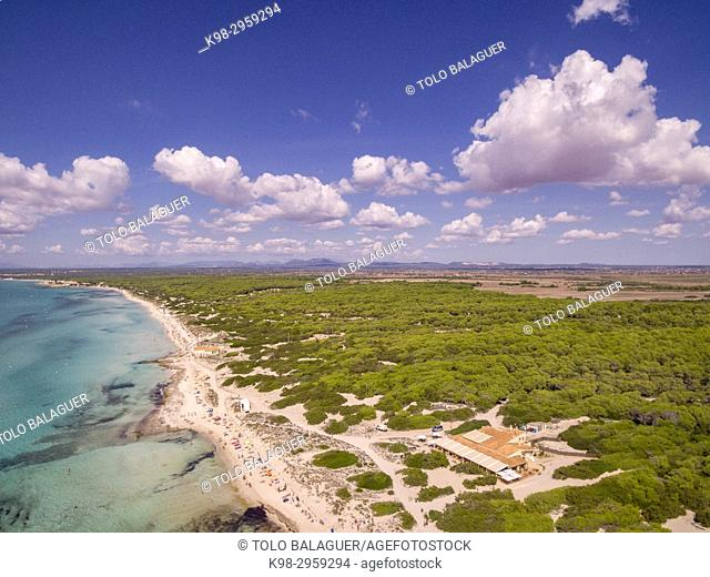 Es Trenc beach, Area Natural de Especial Interés, municipio de Campos, Mallorca, Balearic islands, Spain