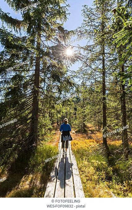 Germany, Bavaria, Lower Bavaria, Bavarian Forest National Park, female hiker on wooden boardwalk