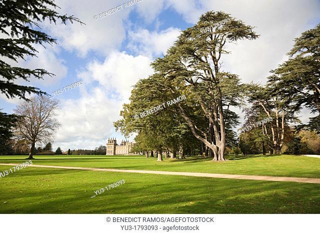 Blenheim Palace parkland, Woodstock, Oxfordshire, England, UK