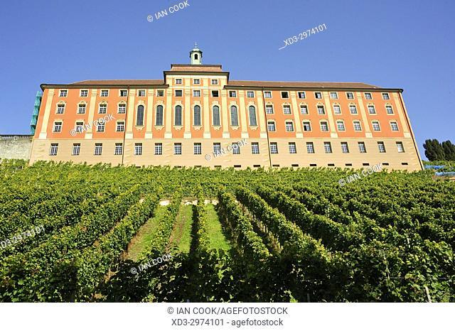 State Vineyard, Meersburg, Baden-Württemberg, Germany