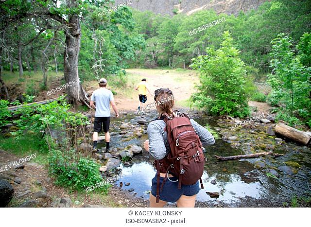 Small group of friends hiking across stream, rear view