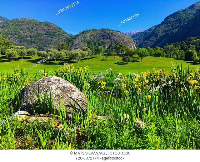 Golf Course Gerre Losone with Flowers and Stone and River and Mountain in Losone, Ticino, Switzerland