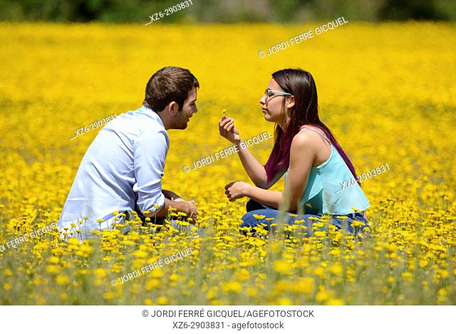 Young couple enjoying the nature in a yellow field