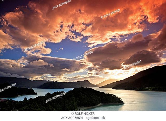 Sunset in Kenepuru Sound, Marlborough District, South Island, New Zealand