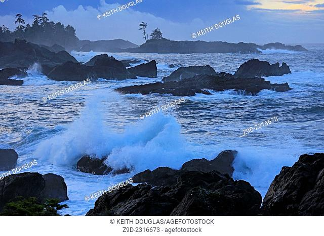 Shoreline scenic along the Wild Pacific Trail, near Ucluelet, Vancouver Island, British Columbia