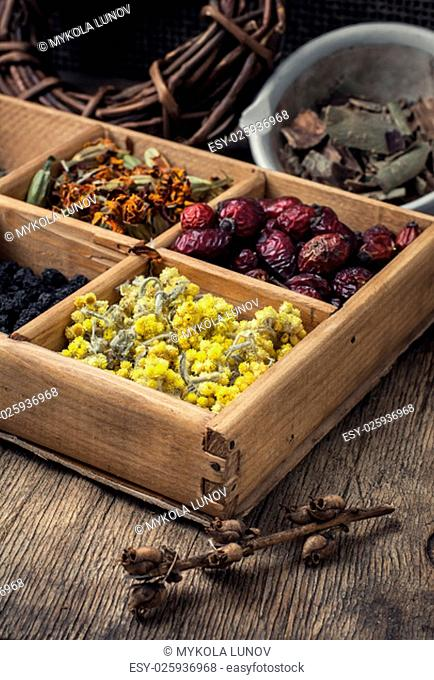 Useful dried herbs for making teas in rustic style