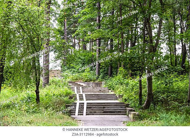 Path through the forest of Jurmala, Latvia, Europe