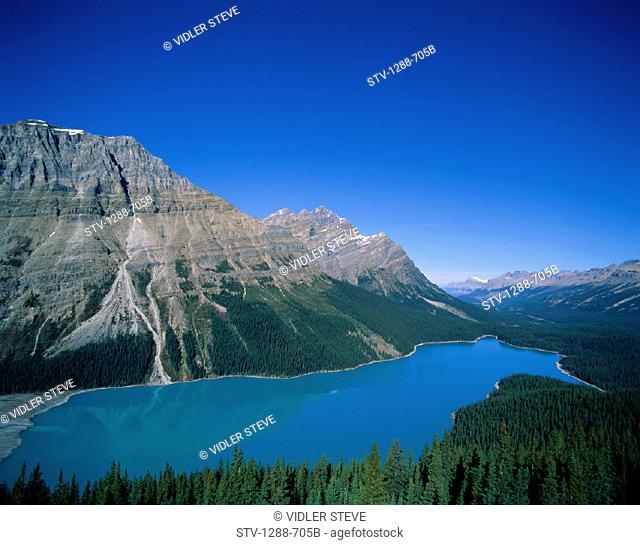 Alberta, Banff, Canada, North America, Holiday, Lake, Landmark, Mountain, National, Park, Peyto, Pristine, Tourism, Travel, Vaca