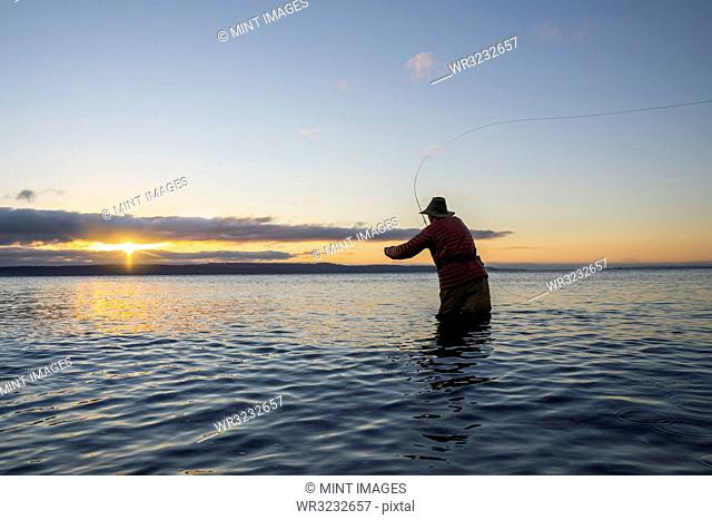 A silhouette view of a fly fisherman casting for salmon and searun coastal cutthroat trout from a salt water beach at a beach on the north west coastline of the...