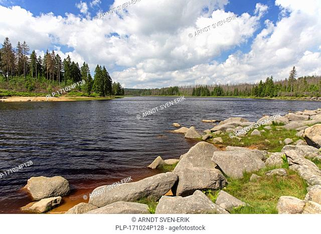 Oderteich, historic reservoir near Sankt Andreasberg in the Upper Harz National Park, Lower Saxony, Germany