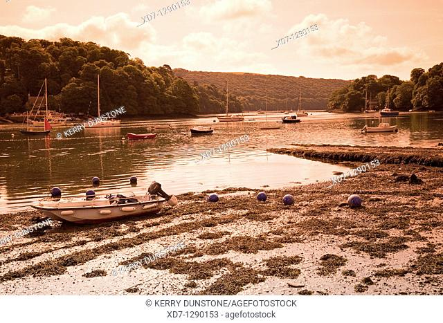 England Devon Dittisham River Dart
