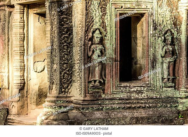 Carvings at Ta Prohm Temple ruins at Angkor Wat, Siem Reap, Cambodia
