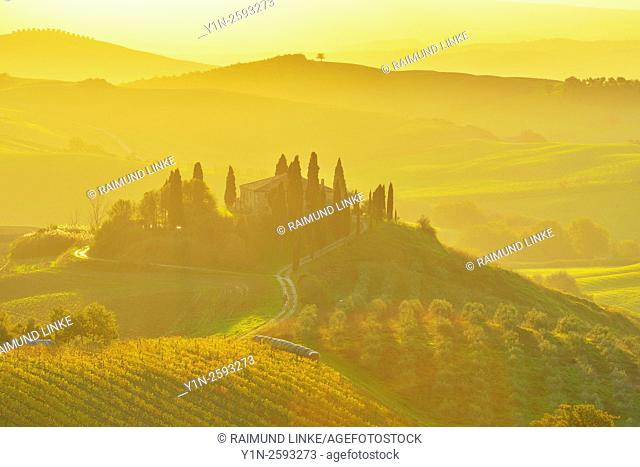 Tuscany Countryside with Farmhouse at Sunrise, San Quirico d'Orcia, Val d'Orcia, Provinz Siena, Tuscany, Italy