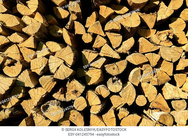 Background of firewood texture after the sawing wood